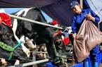 Sữa Việt đến 46 nước, sắp xuất khẩu lô sữa đầu tiên sang Trung Quốc