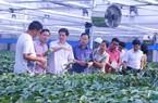 Phó Chủ tịch TƯ HNDVN thăm khu nông nghiệp công nghệ cao Bắc Ninh