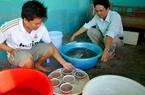 Cấp hóa chất cho Cà Mau trừ dịch bệnh tôm