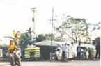 Đi chợ phân nhộn nhịp giữa Hà thành