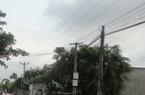 Quảng Nam: Hơn 780 tỷ đồng cho cấp điện nông thôn