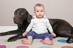 Nuôi chó tốt cho sức khỏe con bạn