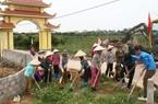 Đông Triều: Nơi đầu tiên ở Quảng Ninh xây dựng tiêu chí NTM thứ 20