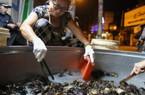 CLIP: 'Đột nhập' vào chợ cua chỉ bán trong đêm suốt 50 năm ở Sài Gòn
