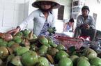 Xuất khẩu rau quả sẽ thu về được tới 69.000 tỷ đồng
