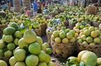 Xuất khẩu rau quả: 3,1 tỉ USD không phải con số ảo