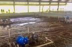 BìnhDương: Vận hành nhà máy xử lý nước thải 115 triệu USD