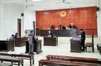 Kỳ án đánh chết 14 con lợn ở Quảng Ninh: 2 lần hoãn xử phúc thẩm