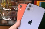 Nên mua iPhone 11 hay iPhone XR?