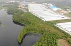 """Trại gà Hòa Phát """"bức tử"""" môi trường: Hỗ trợ gần 1 tỷ cho người dân"""