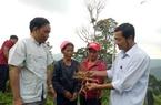Cây dược liệu giúp người dân vùng biên Quảng Nam xóa đói nghèo