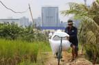 Ở thành phố hoa lệ 9 triệu người, vẫn cấy lúa dưới bóng tòa cao ốc