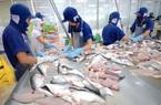 Cá tra Việt xuất khẩu Malaysia tăng mạnh, rộng đường đi Mỹ