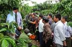 Tái cơ cấu nông nghiệp: Khuyến nông viên cần tham gia chuỗi giá trị nông sản