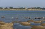 Sông Mê Kông đổi màu, khách du lịch thích thú, nhiều người lại lo