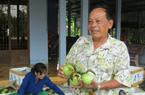 Làm giàu ở nông thôn: Lời bạc tỷ nhờ trồng vú sữa đặc sản Lò Rèn