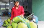 Giá mít Thái lại tăng nhanh, mít loại 1 bao tiền 1 ký?