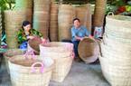 Kiên Giang: Gần Tết, cả làng hối hả đan cần xé không kịp bán