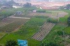 TS Lê Xuân Nghĩa chỉ ra nguyên nhân không thể thế chấp đất nông nghiệp để vay vốn