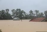 Tổng Cục trưởng Tổng cục Lâm nghiệp: Lũ lụt ở miền Trung do biến đổi khí hậu, không phải do phá rừng