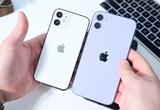 iPhone 12/12 mini vừa ra mắt đã giảm giá, đã đến lúc mua chưa?