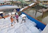 2 tháng, Trung Quốc mua tới hơn 66.000 tấn gạo Việt