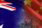 Bị áp thuế yến mạch 80,5%, Australia cũng điều tra hàng loạt sản phẩm Trung Quốc
