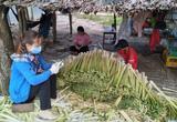 Cà Mau: Trồng thứ cây một thời xem như cỏ dại, rút đọt đon bán làm rau đặc sản mà dân mau khấm khá