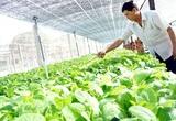 Thái Nguyên có khu nông nghiệp ứng dụng công nghệ cao rộng hơn 154ha