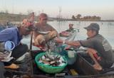 Trắng đêm chịu cái rét tím tái, lật thuyền suýt bỏ mạng để kiếm vài trăm ngàn giữa lòng hồ