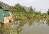 Sơn La: Tắm ao, 3 học sinh chết đuối thương tâm