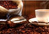 Giá cà phê tiếp tục xu hướng tăng và nỗi buồn của cà phê Việt