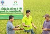 Chàng trai 9x có bằng đại học và cao học về làng khởi nghiệp giúp nông dân