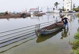 Công trình hồ Búng Xáng làm không đạt chất lượng, Cần Thơ thay 2 giám đốc dự án