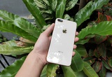 iPhone 8 Plus cập nhật lên iOS 14.5 và cái kết sững sờ người dùng