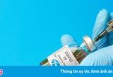 Pfizer chào bán vaccine cho Việt Nam với giá bao nhiêu?