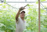 """Chuyên gia hiến kế giúp xuất khẩu nông sản """"cán đích"""" 42 tỷ USD"""