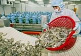 """Thủy sản Minh Phú, Canimex, Thủy sản Cà Mau """"bao"""" khách sạn xịn cho công nhân ở"""