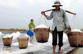 Thu mua tạm trữ muối cao hơn giá thành 30%