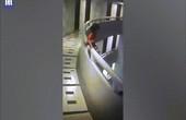 Đang ngủ, bé gái Thái Lan đứng dậy đi, trèo qua lan can tầng 11 rơi xuống đất