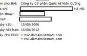"""Gmail.vn bị web Trung Quốc """"đội lốt"""""""
