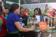 """Lễ hội """"hương sắc cà phê """" và công bố chỉ dẫn địa lý cà phê Sơn La"""