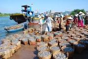 Xuất khẩu thủy sản tăng vọt, cuối năm lo thiếu nguyên liệu