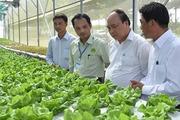 Vay gói 100.000 tỷ cho nông nghiệp công nghệ cao được giảm lãi tối đa 1,5%