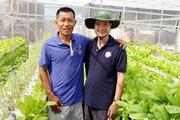 """""""8X"""" Sài Thành trồng rau sạch thổ canh từ sáng chế độc đáo"""