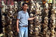 Kỹ sư trẻ thu nhập tiền tỉ từ trang trại trồng nấm
