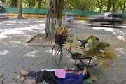 Người Hà Nội vật vã trong đợt nắng nóng khủng khiếp dịp cuối tuần