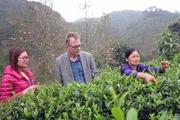 Kinh tế hợp tác xã động lực cho nông thôn mới