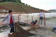 Chiềng Bằng sau nửa năm cán đích nông thôn mới