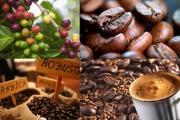 Giá nông sản hôm nay (27.7): Cà phê lấy lại ngưỡng 46.000 đồng/kg, hồ tiêu tăng lên đỉnh mới